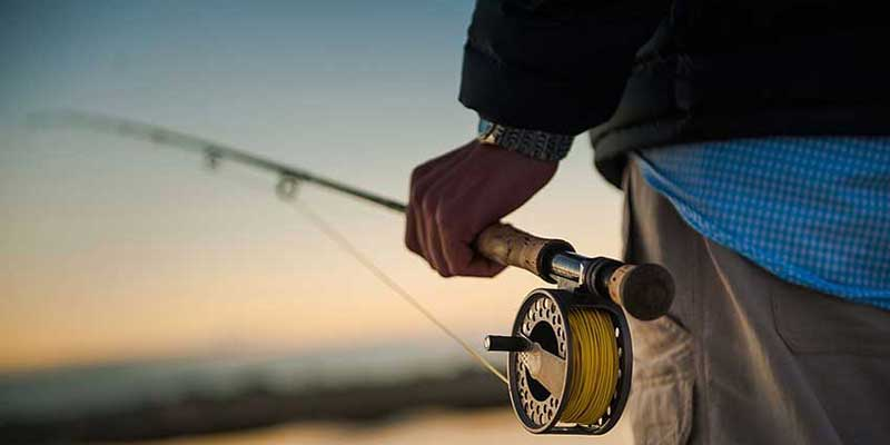 Best Fishing Poles