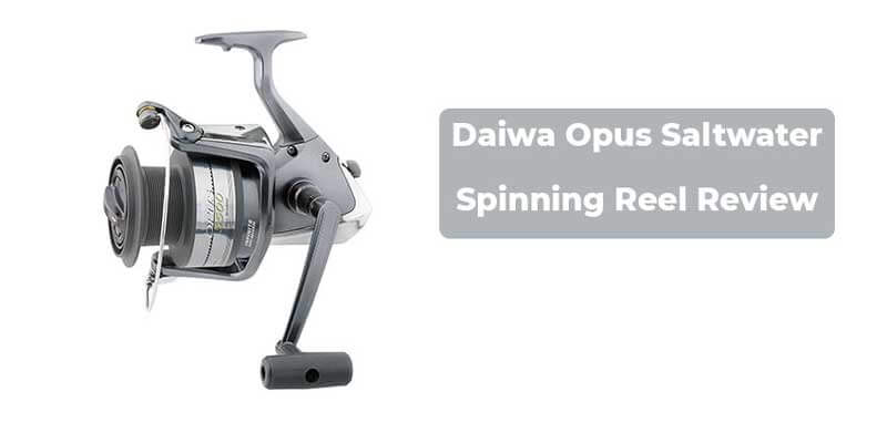 Daiwa Opus Saltwater Spinning Reel Review
