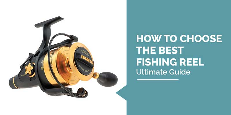 How to Choose the Best Fishing Reel