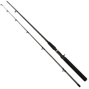 Shimano FXS 2-Piece Spinning Rod